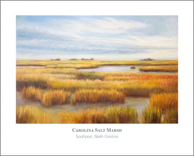 Carolina Salt Marsh-Strazza